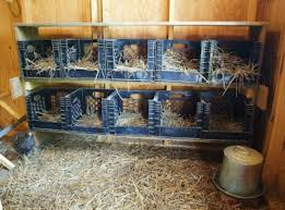 Egg Crate Nest Boxes