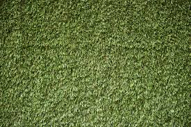 Artificial Grass For Nest Box