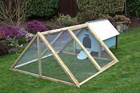 Coop For Laying Hens