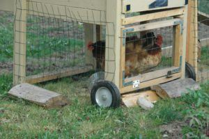 Chicken Coop Wheels