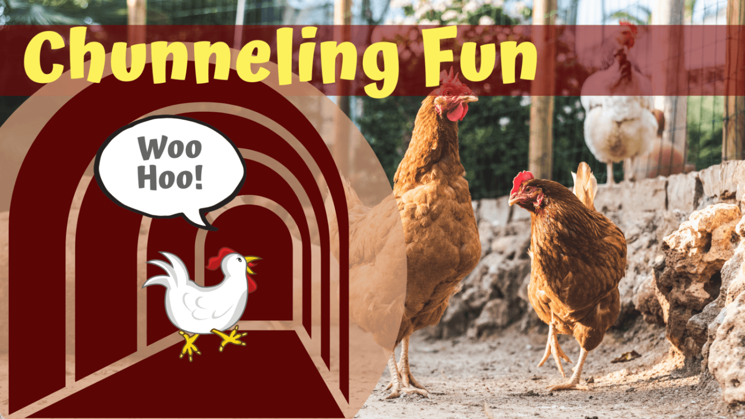 how do you make chicken tunnel