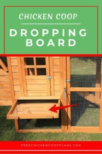 chicken coop droppings board